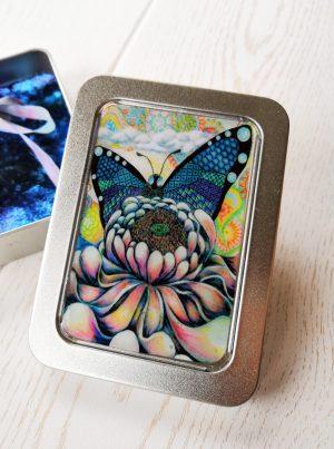 butterfly_box